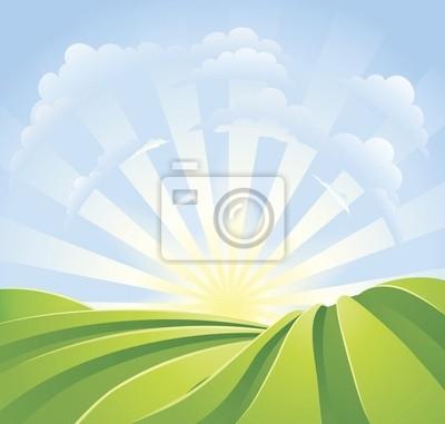 Idylliczne zielone pola z promieni słonecznych i błękitne niebo