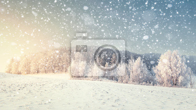 Idylliczny zimowy krajobraz w śniegu. Święta Bożego Narodzenia i Nowy Rok. Płatki śniegu spadają na śnieżnej łące z mroźnymi drzewami. Idealna zimowa sceneria. Xmas natury tło z światłem słonecznym.