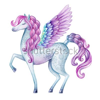 Naklejka ilustracja akwarela pegasus, stwór z bajki, latający ogier, magiczne zwierząt clipart, na białym tle