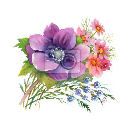 Ilustracja akwarela pięknym bukietem kwiatów zawilec