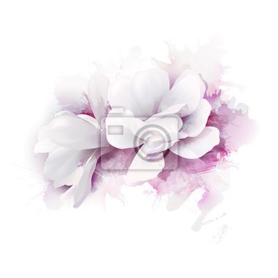 Ilustracja dwóch bia? Ych pi? Knych Magnolias, Wiosna eleganckie kwiaty przedstawione na tle akwarela liliowy.