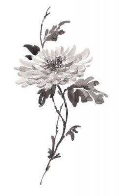 Ilustracja Ink kwiatów, kwitnienie chryzantemy w trybie monochromatycznym. Sumi-e, U-sin, gohua malowanie stile. Sylwetka składa się z czarnego pędzla na białym tle.