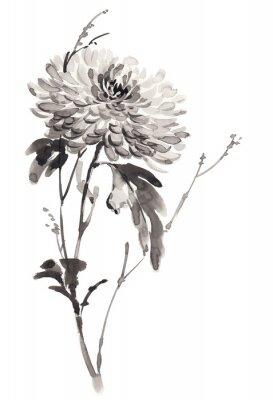 Ilustracja Ink kwitnące chryzantemy. Sumi-e, U-sin, gohua malowanie stile. Sylwetka składa się z czarnego pędzla na białym tle.