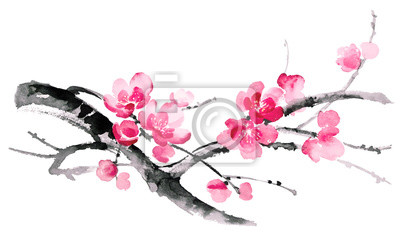 Ilustracja Ink kwitnące gałęzie wiśni. Sumi-e, U-sin, gohua stylu malarstwa. Sylwetka składa się z pędzla na białym tle.