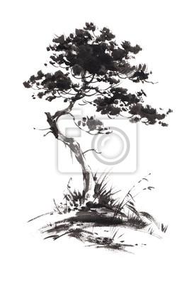 Ilustracja Ink uprawy sosnę z pewnym trawie. Sumi-e, U-sin, gohua malowanie stile. Sylwetka składa się z czarnego pędzla na białym tle.