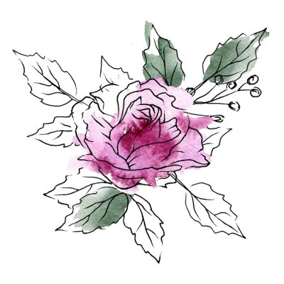 Ilustracja kwiatowy. Akwarela kwiat róży, czarna grafika liniowa, splash. Zaproszenie do dekoracji, kartkę z życzeniami, plakat. Malowanie ręczne Bukiet na białym tle.