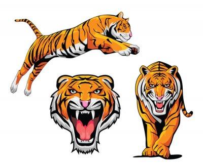Naklejka Ilustracja Tygrys Ustaw