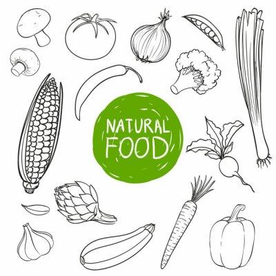 Naklejka Ilustracja wektora ręcznie rysowane warzywami