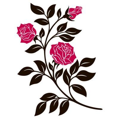 Naklejka ilustracji wektorowych, element dekoracji, czarno-biała róża oddział z czerwonymi kwiatami