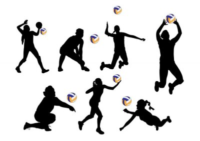 Naklejka ilustracji wektorowych tło graficzne siatkarze sportu