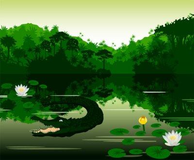 Naklejka Ilustracji wektorowych tropikalna rzeka z krokodyla
