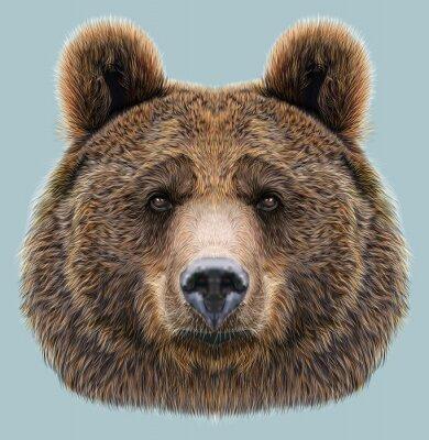 Naklejka Ilustrowana Portret Niedźwiedzia na niebieskim tle
