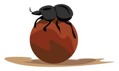 Naklejka Image of dung beetle, vector or color illustration.