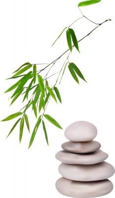 Naklejka isolated grey stones and green bamboo illustration