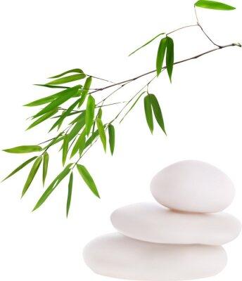 Naklejka isolated white stones and green bamboo illustration