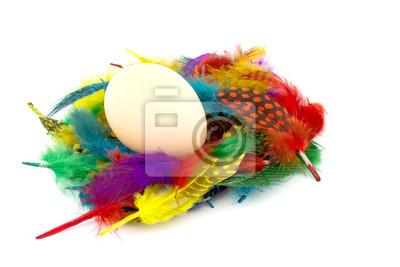 jaj na kolorowych piór na białym tle