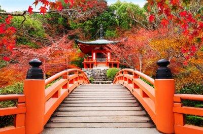 Naklejka Japanese autumn scene. Travel to Kyoto.