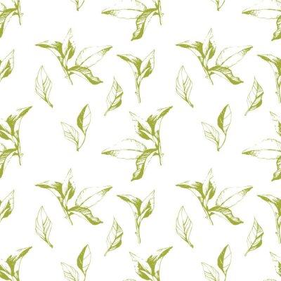 Naklejka Jednolite tło z liści. Szkic stylu.