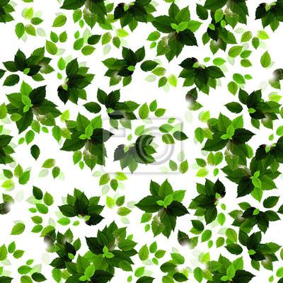 Jednolite tło z zielonych pór roku pozostawia. Wiosenne i letnie gałęzie