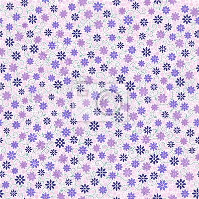 Jednolite wzór z małych delikatnych Daisy kwiaty w różowy, niebieski, fioletowy kolor na białym tle. Może być stosowany do tapety, tkaniny, papier pakowy.
