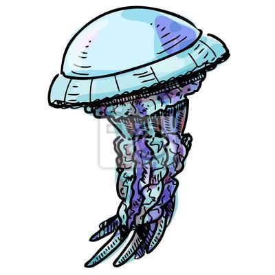 Jelly fish samodzielnie na białym tle