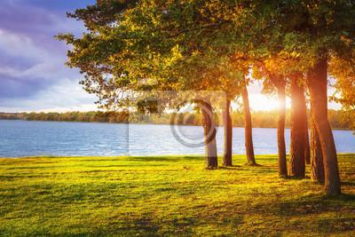 Jesień krajobraz z kolorowymi drzewami na jeziornym brzeg przy zmierzchem.