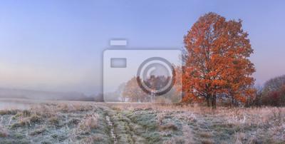 Jesień natura krajobraz z jasnym niebem i barwionym drzewem. Zimna łąka z hoarfrost na trawie w Listopadzie ranku. Niesamowity upadek. Wibrujący panoramiczny widok na naturalnej dzikiej jesiennej łące