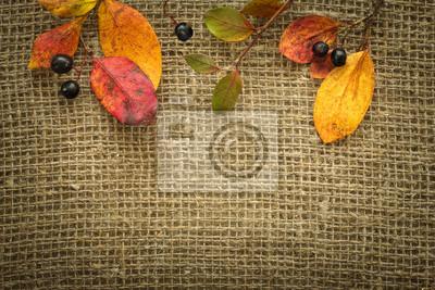Jesienią tła z liśćmi i jagody