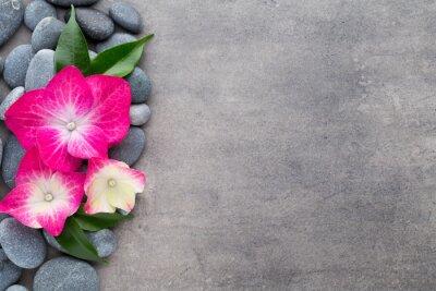 Naklejka kamienie i kwiaty Spa, na szarym tle.