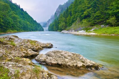 Naklejka Kamienie na brzegu rzeki w górach. Dunajca