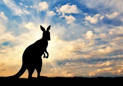 Naklejka Kangaroo sylwetka na tle nieba