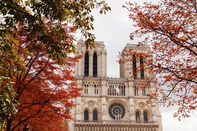 Naklejka Katedra Notre Dame w Paryżu