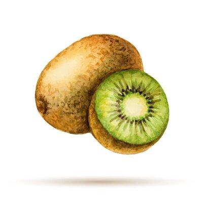 Naklejka Kiwi