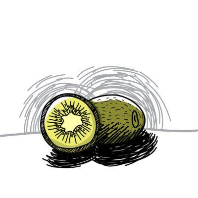 Naklejka Kiwi z tuszem wyciągnąć rękę-ilustracji wektorowych