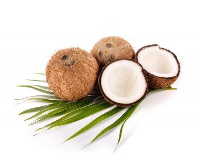 Naklejka kokos na białym tle