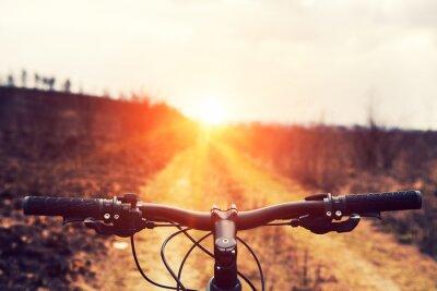 Naklejka Kolarstwo górskie w dół wzgórza malejącym szybko na rowerze. Widok z