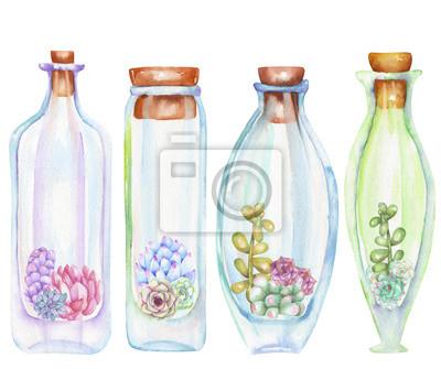Kolekcja florariums, zestaw butelek akwarela z sukulentów i cuctuses środku, ręcznie rysowane na białym tle