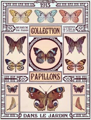 Naklejka Kolekcja motyli