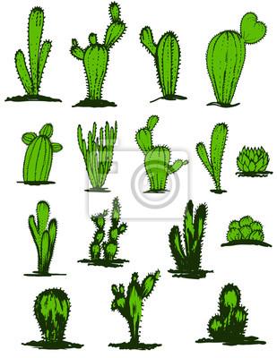 Kolekcja ręczne zielone kaktusy, ilustracji wektorowych. Różne rodzaje roślin ozdobnych kaktusów realistyczny zestaw ikon samodzielnie. Kolorowy