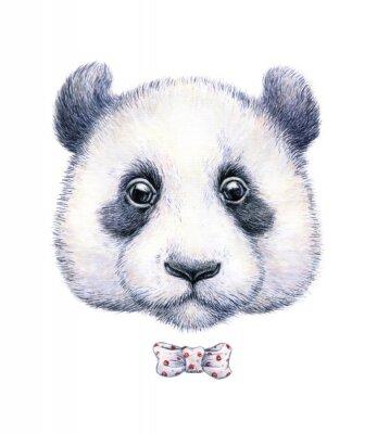 Naklejka Kolor wody rysunek panda na białym tle
