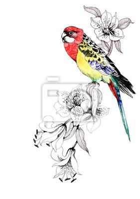 Kolorowe papugi na gałązce