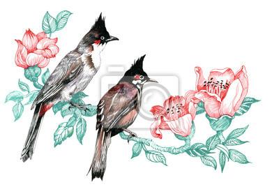 Kolorowe Ptaki na gałęzi
