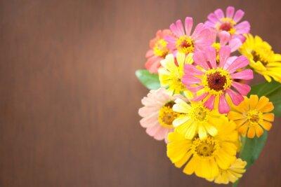 kolorowy kwiat na ciemnym tle brązowego drewna, widok z góry