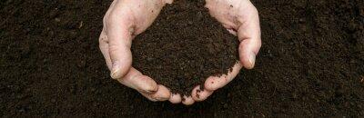Naklejka Kompost - natürlicher Dünger in der Hand