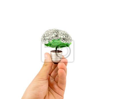 koncepcja ekologicznego żarówka z roślin wewnątrz światło