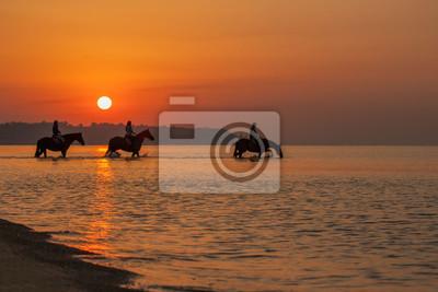 Naklejka Konie kąpią się w morzu o świcie. Tło piękne niebo i wschód słońca