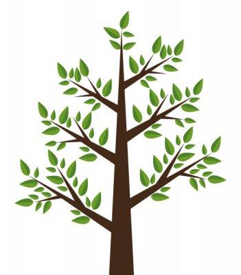 Naklejka Konstrukcja drzewa roślin