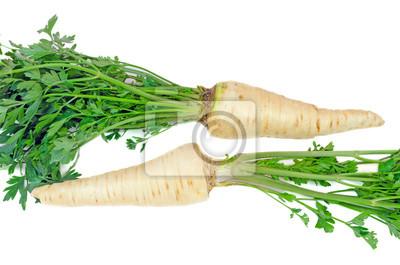 Naklejka korzeń parsley2
