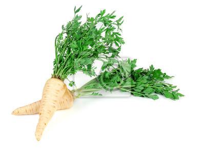 Naklejka korzeń parsley3