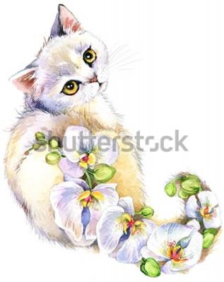 Naklejka Kot. Kwiat akwarela ilustracja.
